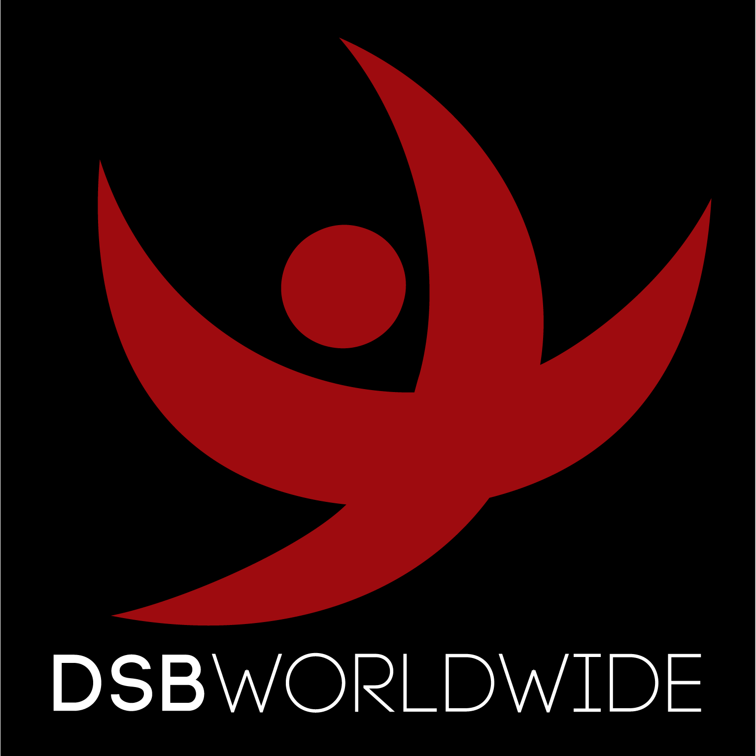 DSB - The best damn web design studio in North Texas
